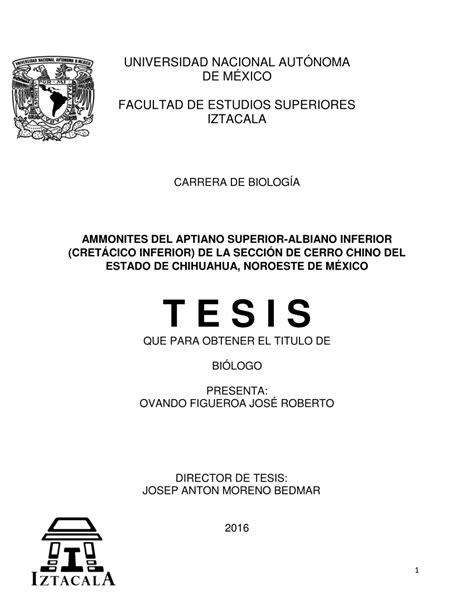 PDF  AMMONITES DEL APTIANO SUPERIOR ALBIANO INFERIOR ...