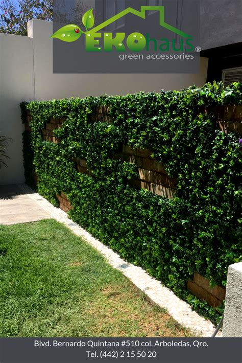 Pequeños grandes detalles   Muros verdes, Follaje ...