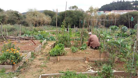 Permítese a agricultura de autoconsumo se a leira está a ...