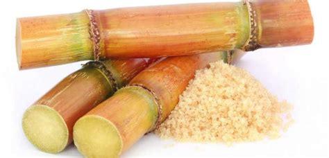 Perú importó azúcar de caña en bruto por US$ 34 millones
