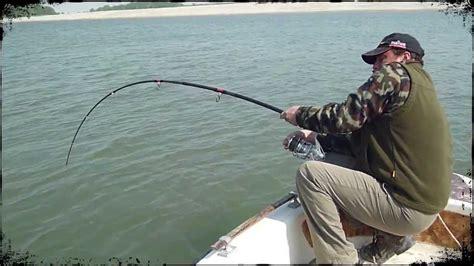 Pesca Siluro cattura siluro nel Po esemplare di 232 cm www ...