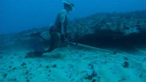 Pesca Submarina no Algarve   Spearfishing in Algarve ...