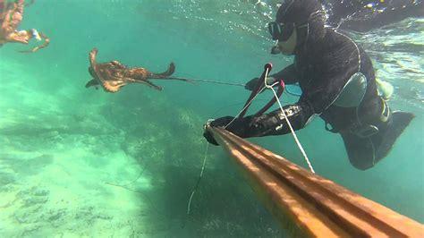 Pesca Submarina Pulpo 3,5 kg se come a otro   YouTube