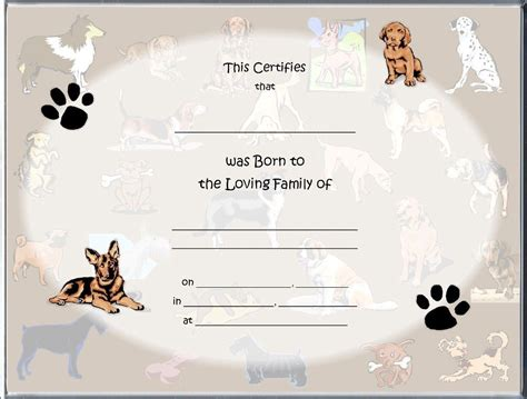 Pet Birth Certificate | ... style birth certificates $ 3 ...