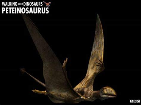 Peteinosaurus   Dinopedia   FANDOM powered by Wikia