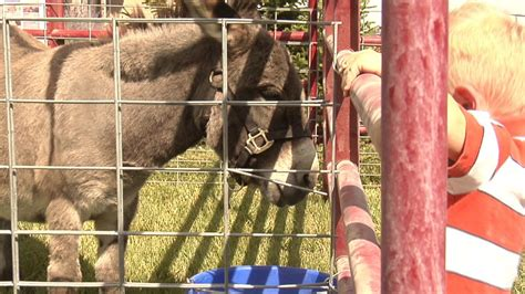 Petting zoo and a local restaurant help Jerome FFA group ...