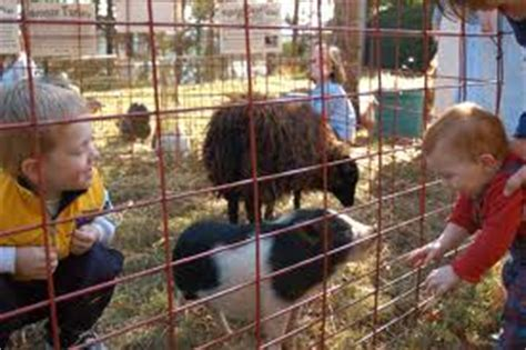 Petting Zoo Birthday Party Rentals for Kids! | Fun Factory ...