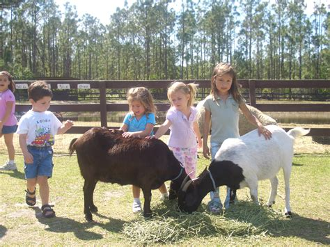 Petting Zoo Coupons near me in Manorville, NY 11949 | 8coupons