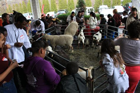 Petting Zoo Parties in NY, NYC, NJ, CT & Long Island   Our ...
