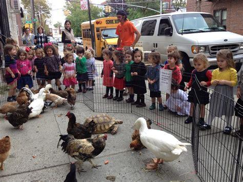 Petting Zoo Parties NY, NYC, NJ, CT, Long Island ...