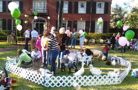 Petting Zoo Parties | Petting zoo birthday party, Petting ...