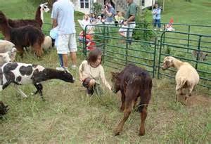 Petting Zoo | Pro Entertainment Nashville & The Party Bus