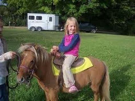 Petting Zoo Rental Pony Rides Rent Birthday Party Pony San ...