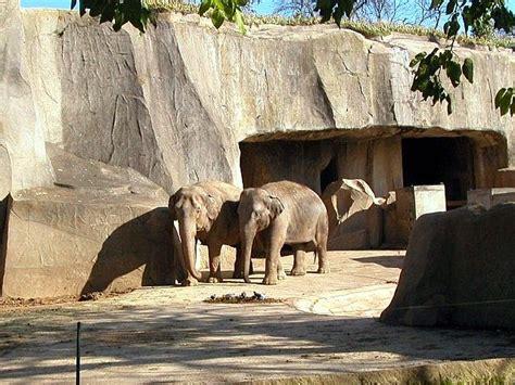Photo 93: Elephant exhibit   Copyright  06/2009 by Jonas ...