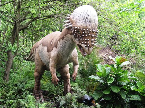 Photos: Dinosaurs Come To Life At The Bronx Zoo   New York ...