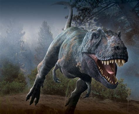 Pictures & Photos from Dinosaur Planet  TV Mini Series ...