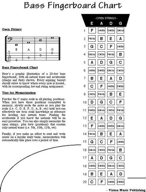 Pin by Steve Kim on Bass   Bass guitar notes, Learn bass ...