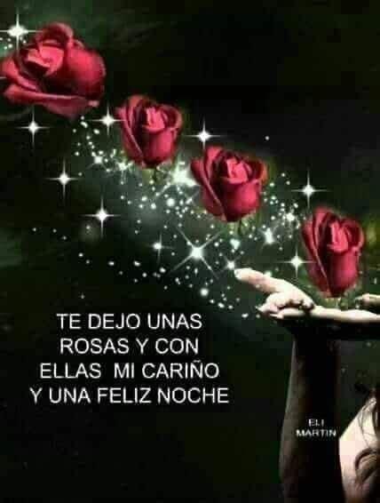 Pin de Alfredo Maldonado en noches inolvidables | Rosas de ...