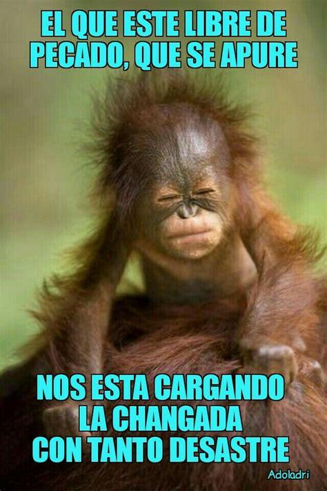 Pin de bicho Tello en Frases chistosas   | Memes de buenos ...
