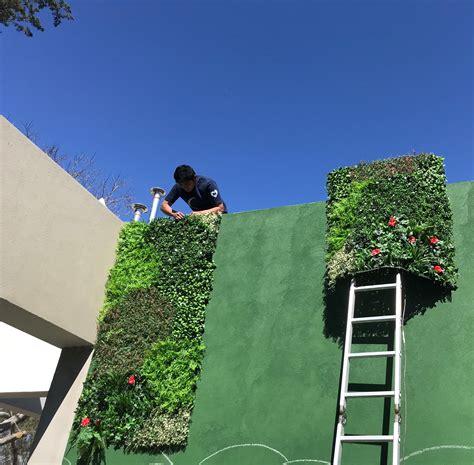 Pin de Just Green en Muros COMBINADOS   Muros verdes ...