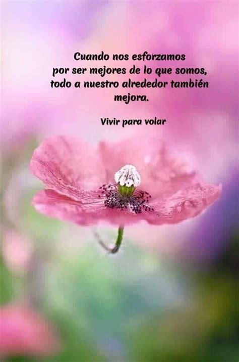 Pin de Laura Ance en Frases Bellas | Frases reflexion ...