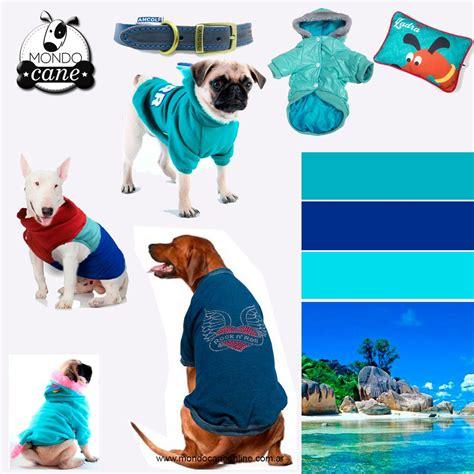Pin de Mondo Cane en Colores | Mascotas, Tienda de mascotas