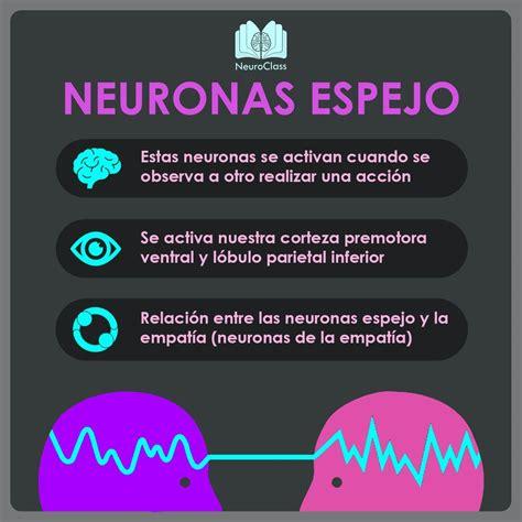 Pin de NeuroClass en Infografías psicología, educación y ...