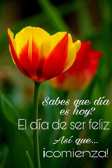 Pin de Yenny Mora en buenos dias | Tulipanes, Flores ...