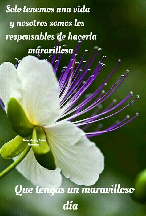 Pin en Naturaleza Y Frases Hermosas.