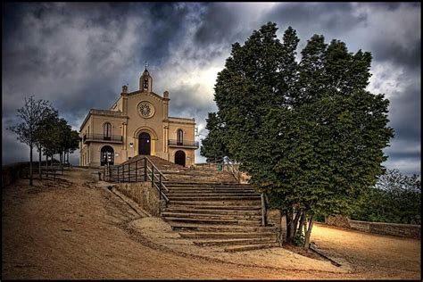Pin en Sant Boi de Llobregat
