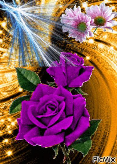 Pin on Flowers   פרחים