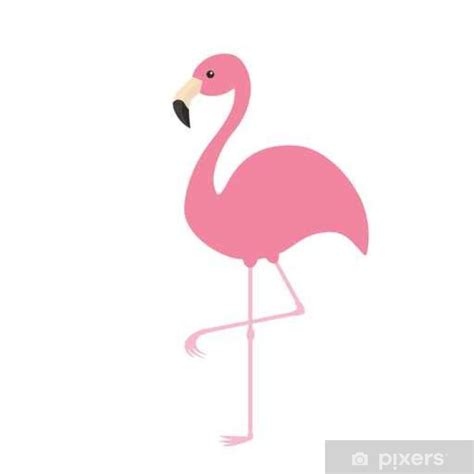 Pink flamingo. Exotic tropical bird. Zoo animal collection ...
