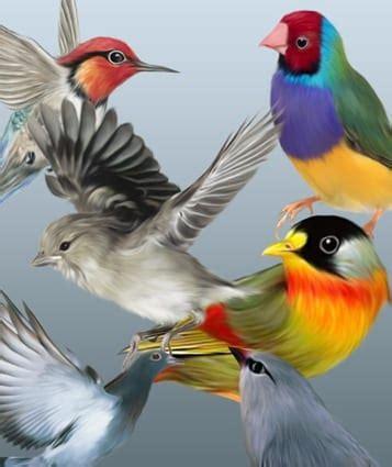 Pinturas digitales de aves para descargar gratis