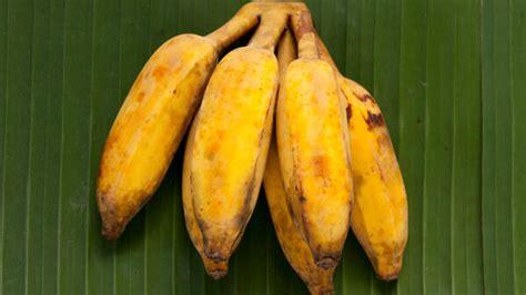 Pisang awak bananas taste very sweet and are very popular ...