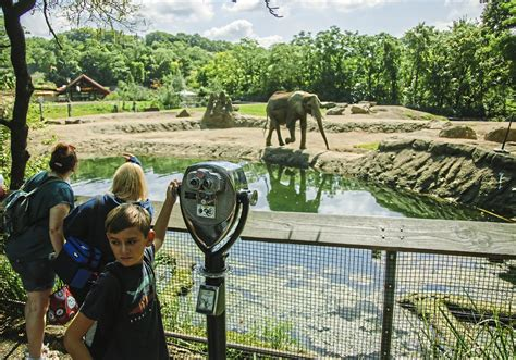 Pittsburgh Zoo battles  criticisms and accusations  while ...