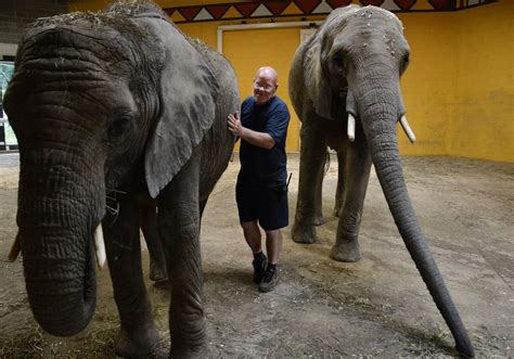 Pittsburgh zoo drops accreditation due to disagreement ...