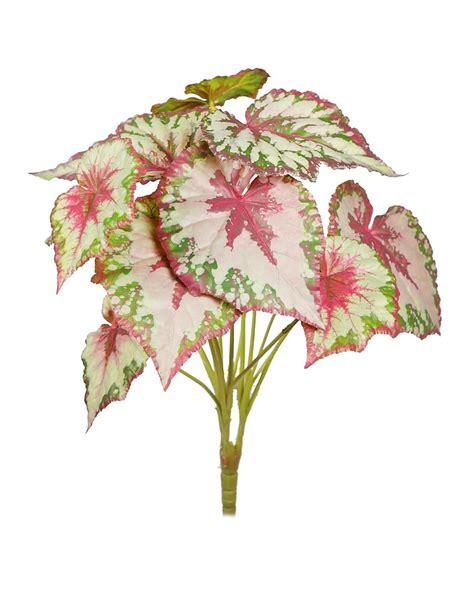 Planta Begonia Tacto Natural V. 50cm Artificial   Comprar ...