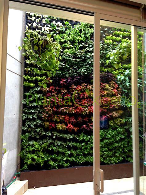 Planta Oxígeno Muros Verdes   Cotiza en línea   Planta Oxígeno