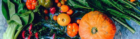 Plantamus Vivero online