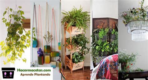 Plantas de interior y las macetas mas ideal y lindas para ...