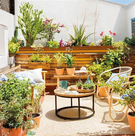 Plantas de moda para tu hogar y tu terraza | A2projects