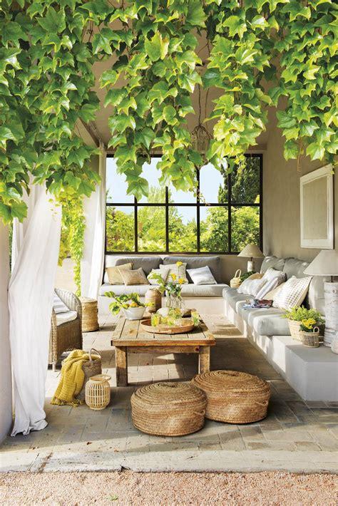 Plantas enredaderas y trepadoras para decorar la casa