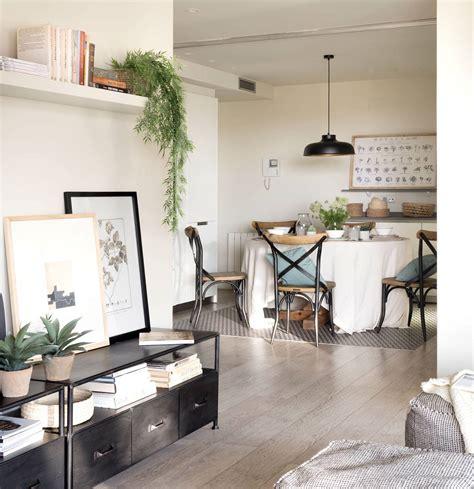 Plantas ideales para el salón