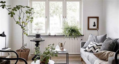 Plantas naturales y estilo escandinavo   Decoracion de ...