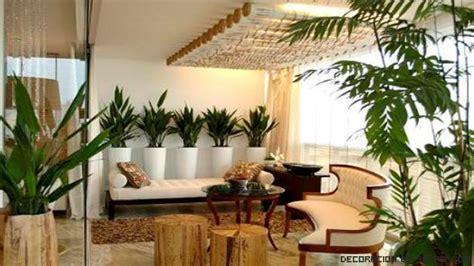 Plantas ornamentales para decoración   Decoración de Salas
