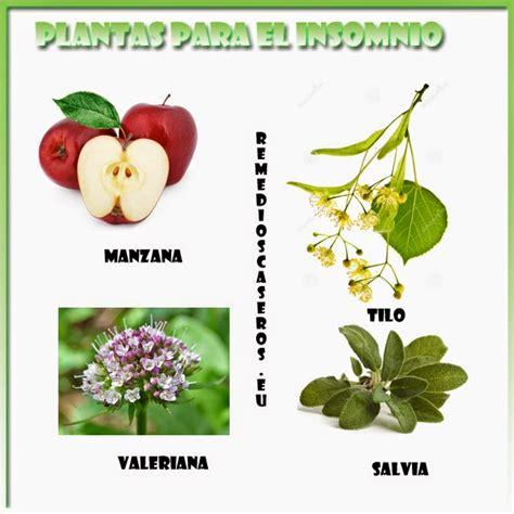 PLANTAS PARA DORMIR BIEN: REMEDIOS NATURALES   SERES VIVOS ...