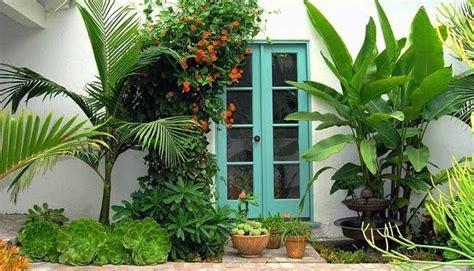 Plantas Para Exteriores Resistentes Al Sol