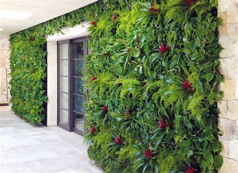 Plantas para oficinas: Muros vegetales.