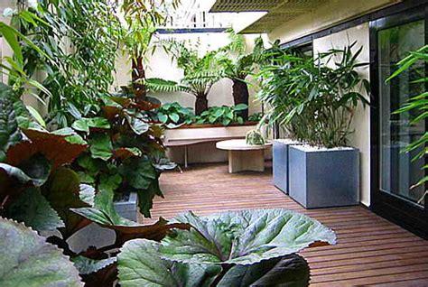 Plantas para patios y jardines sin sol ~ The Garden of ...