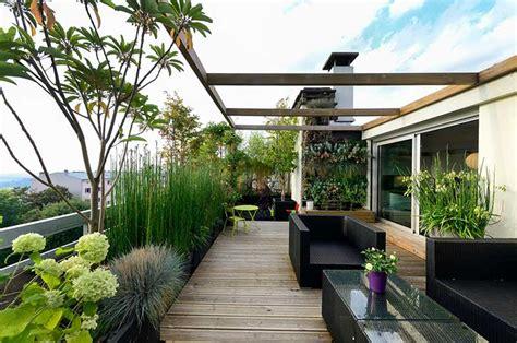 Plantas para terraza: 7 especies para crear un oasis en casa